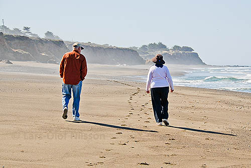 A man and a woman are walking on a beach by the sea.